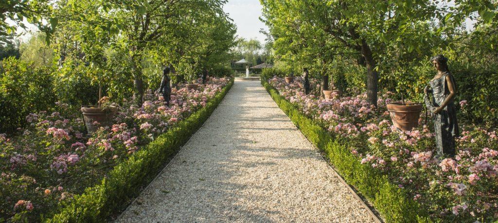 Rose garden in Borgo Santo Pietro estate