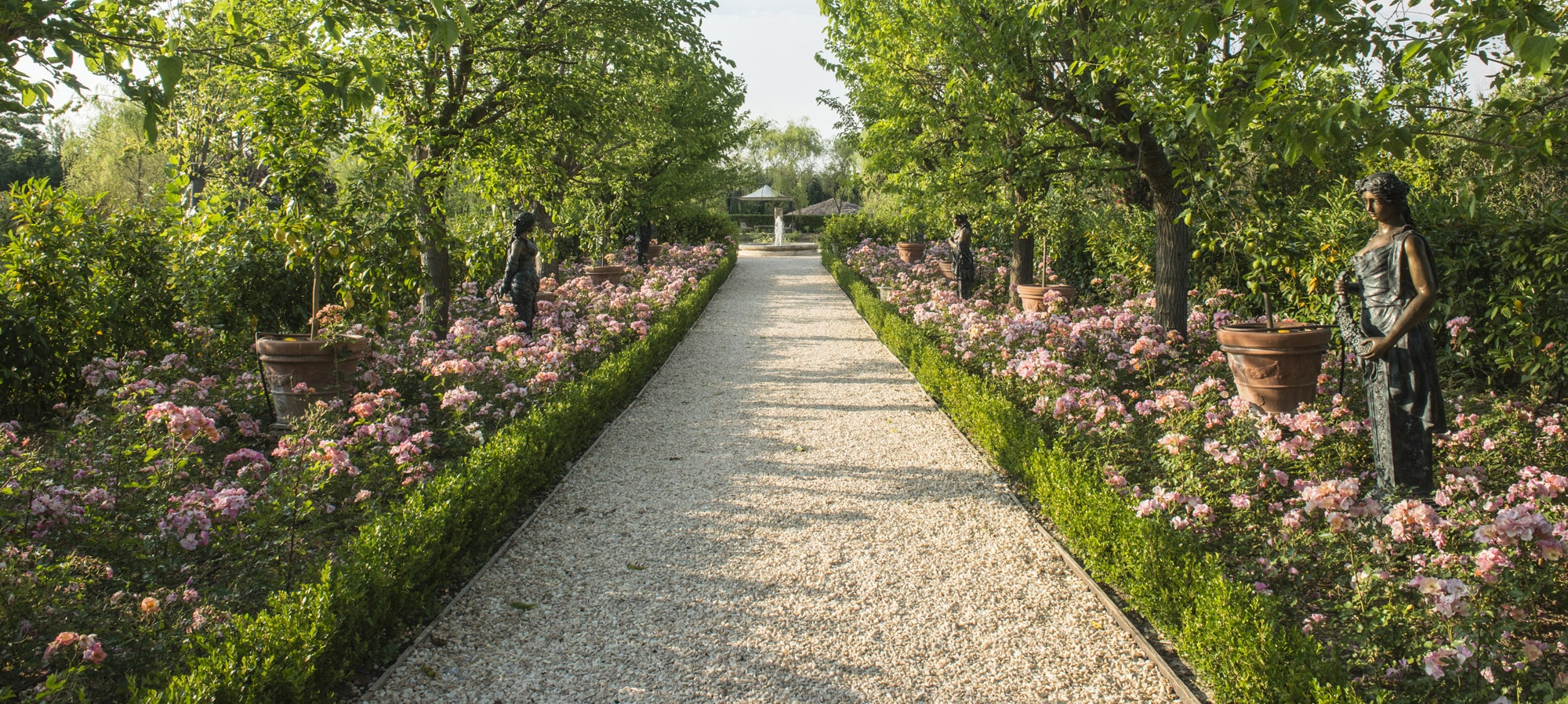 Rose garden in Borgo Santo Pietro estate